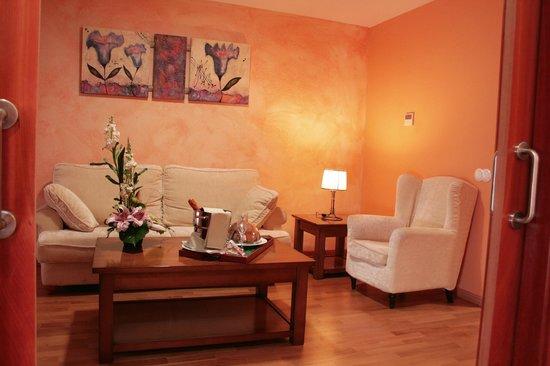 Spa Domus Aurea: Salón de la suite