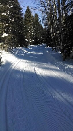Solbakken Resort: XC ski trails go right from our front door!