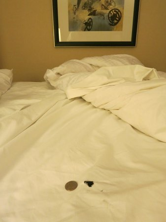 The Westin Alexandria : There were 2 holes and one rip in our sheet
