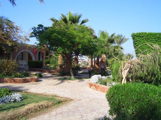 Dessole Aladdin Beach Resort: территория