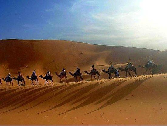 Desert Berber Fire-Camp: desert camel trekking