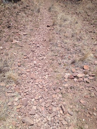 Davis Mountains State Park: Loose rock trail.
