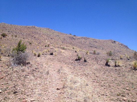 Davis Mountains State Park: Indian lodge trail - hardly discernible.