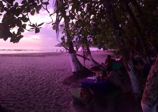 Balu's Beach Bar: Last Light at Balu's