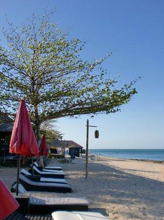 SriLanta Resort: Les transats... Pour le farniente