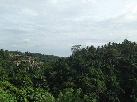 Alila Ubud: вид на ущелье