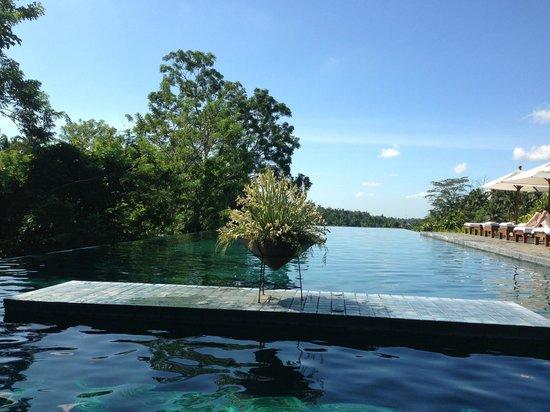 Alila Ubud : панорамный