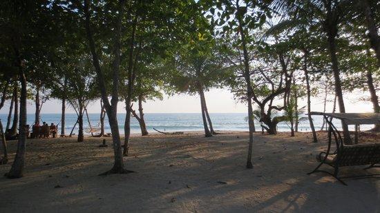 Casa Cecilia: view to beach