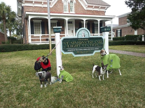 St. Simons Lighthouse Museum: Dogs visiting the lighthouse