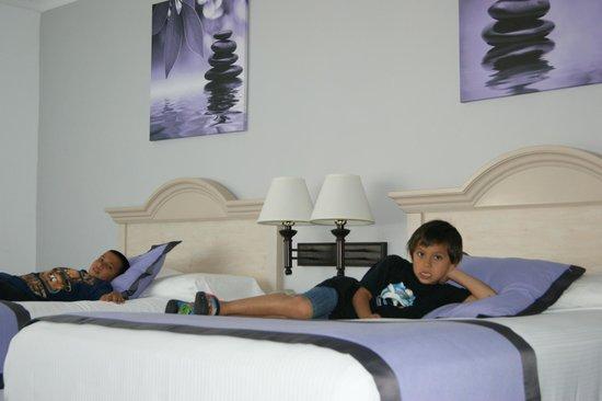 Hotel Riu Plaza Miami Beach: Amplia