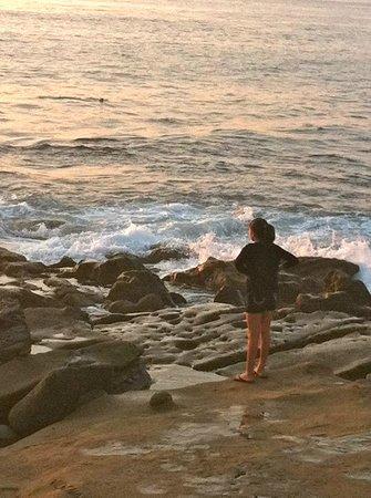 La Jolla Kayak : La Jolla Cove Summer