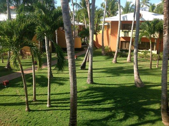 Iberostar  Bávaro Suites: Vista do apartamento