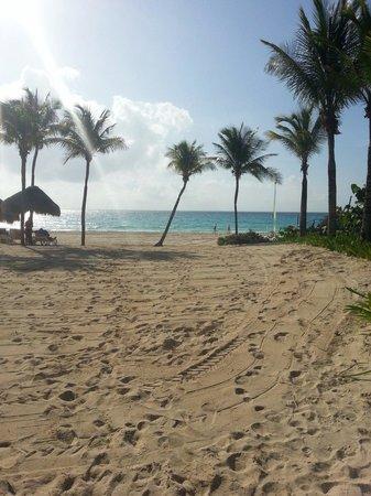 Iberostar Tucan Hotel : Beach at hotel