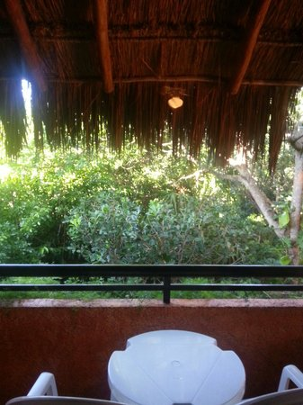 Iberostar Tucan Hotel : Jungle view on the balcony