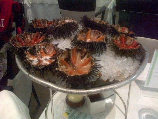 Le Festival de la Mer : ricci di mare: dov'è la polpa??
