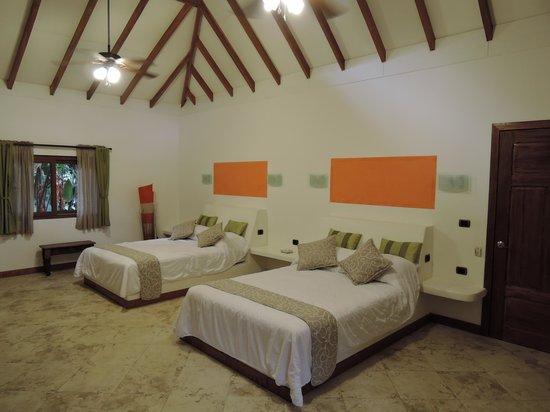 Cariblue Beach & Jungle Resort: Interior bungaló