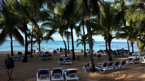 Viva Wyndham Dominicus Beach: :)