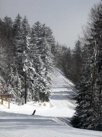Snowshoe Mountain Resort: Heisler Way - a pretty green trail