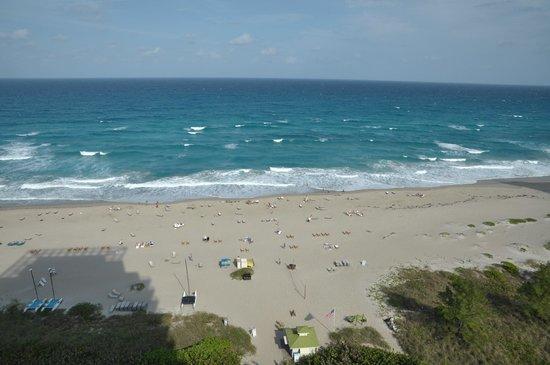 Marriott's Oceana Palms: beach in front of resort