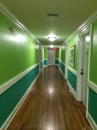 Colony Hotel and Cabana Club : The bright hallway