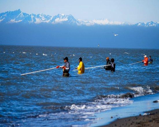 Quality Inn Kenai: Dipnet Fishing
