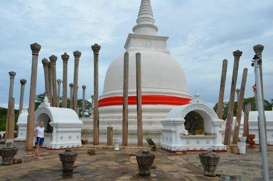 Dagoba of Thuparama: Столбики вокруг ступы