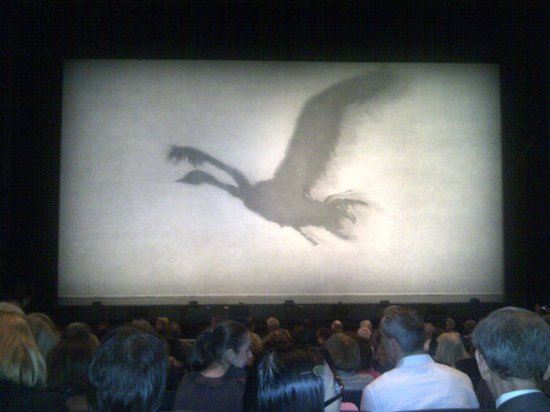Sadler's Wells : Swan Lake