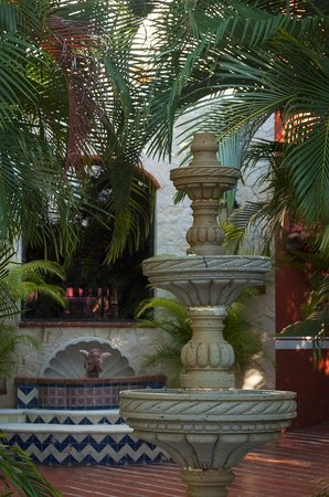 Occidental Cozumel: Near the reception