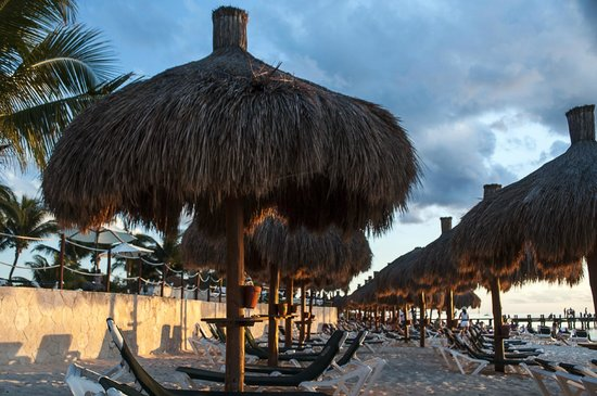 Occidental Cozumel: Beach