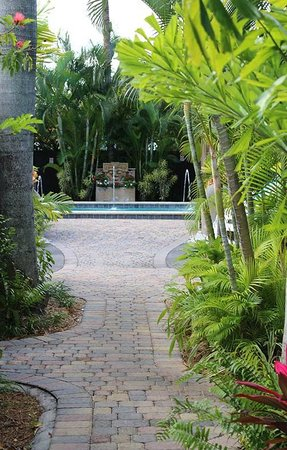 The Cabanas Guesthouse & Spa : Heated Salt Water Pool (1 of 2 on the property)