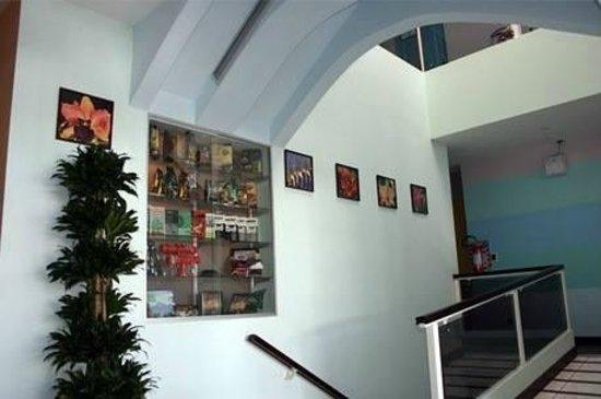 Hotel Casa Cambranes: First Floor