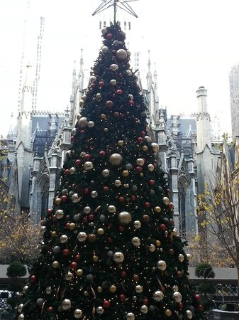 Lotte New York Palace: Christmas tree out front
