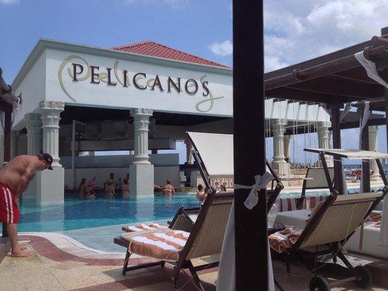 Hyatt Zilara Cancun : Pelicanos
