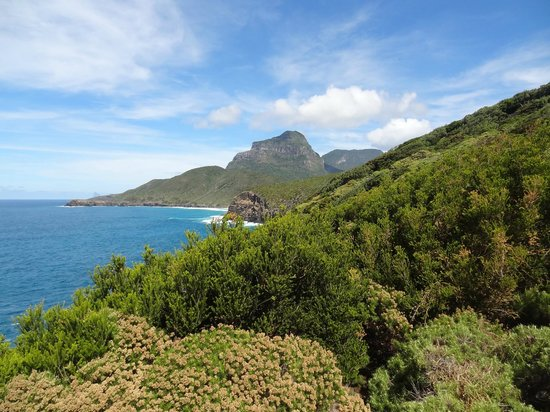 Lord Howe Island Walking Trails: View from Clear Place