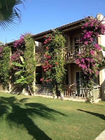 Paloma Oceana Resort: bungalos