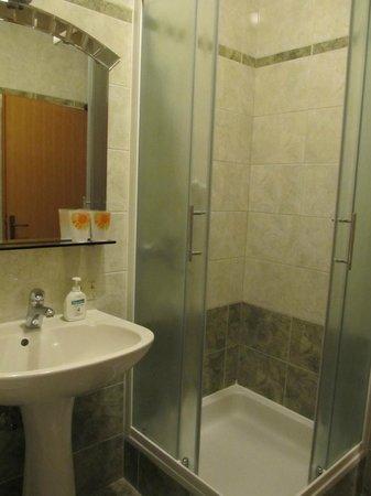 Prenociste Pleska: bathroom