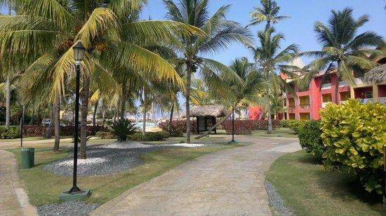 Tropical Princess Beach Resort & Spa: Patio