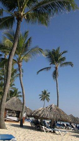 Tropical Princess Beach Resort & Spa: Paisagem da praia