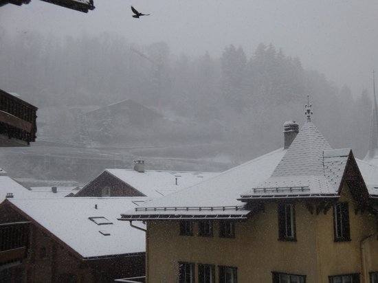 Hotel Bernerhof Gstaad: View from room