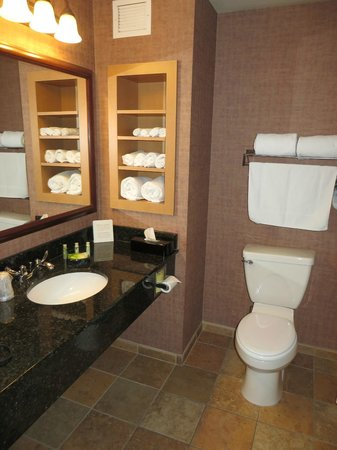 Holiday Inn Express Hotel & Suites Brainerd-Baxter : Bathroom in a double room.