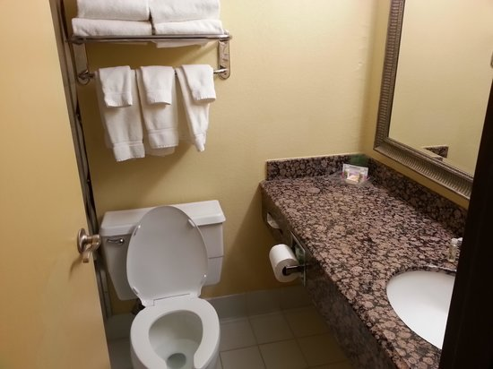 هوليداي إن روتشستر داونتاون: Bathroom