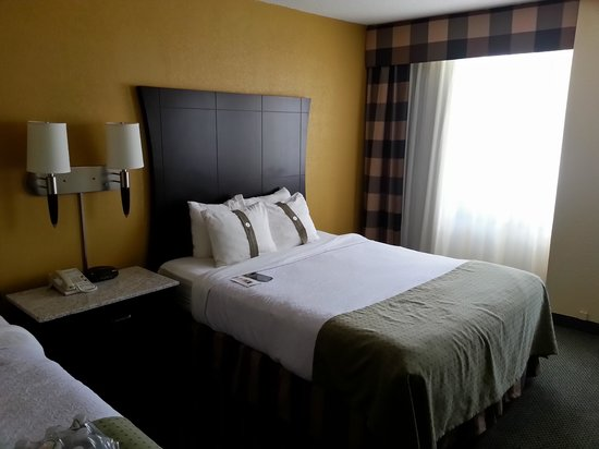 Holiday Inn Rochester Downtown: Room