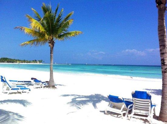 Barcelo Maya Beach : PARADISE....