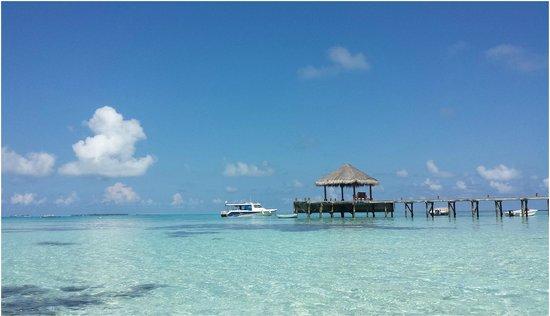 Mirihi Island Resort: surrounding