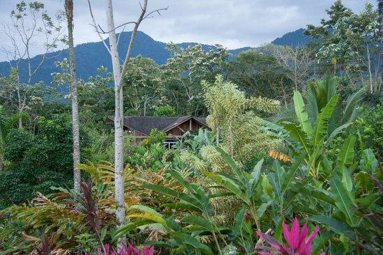 Hotel Brisas Arenal: view of the cabin from the entrance to the property
