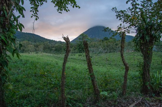 Hotel Brisas Arenal: view from behind the yard