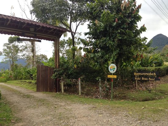 Hotel Brisas Arenal: the entrance
