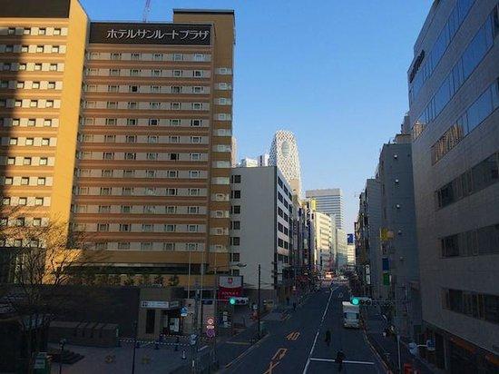 Hotel Sunroute Plaza Shinjuku 140328