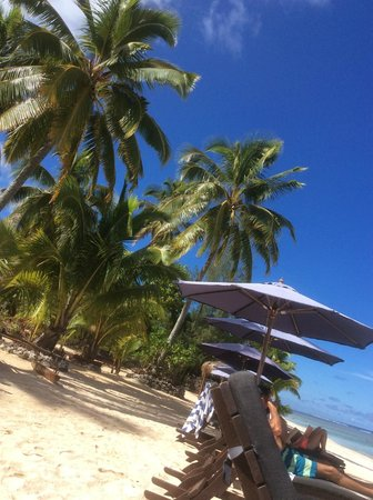 Manuia Beach Resort: View from the sun loungers