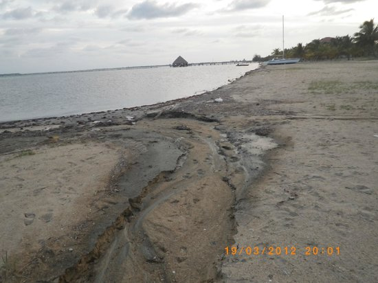 The Placencia Hotel and Residences: Ugly dredging placenta beach ruins everything